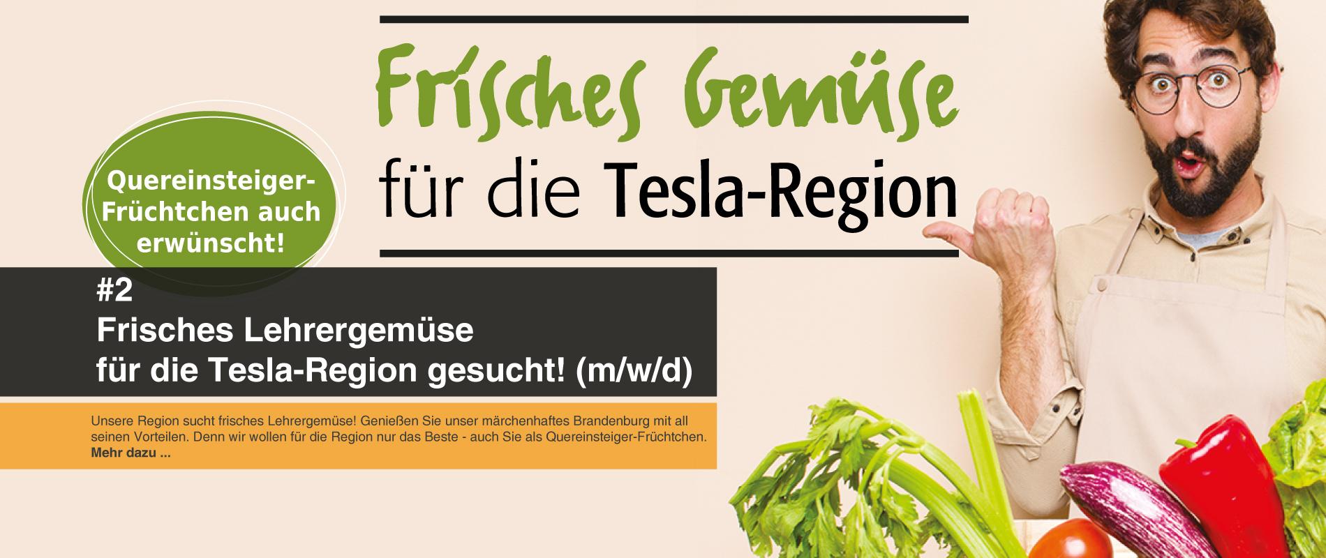 Lehrergemüse_Lehrer-für-die-Tesla-Region-gesucht
